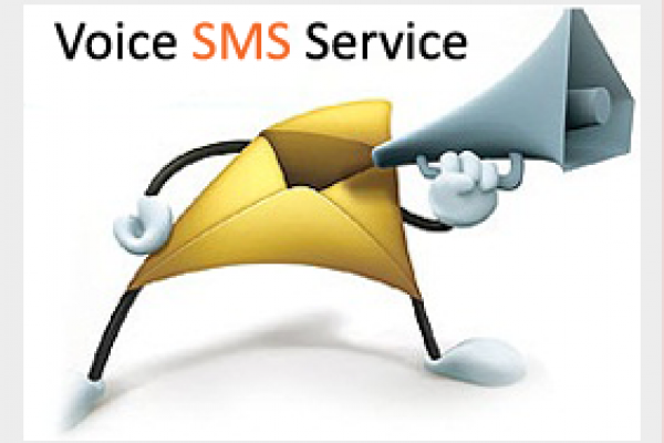 voice-sms-service